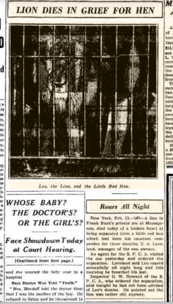 Chicago Daily Tribune Feb 14, 1936 pg 2